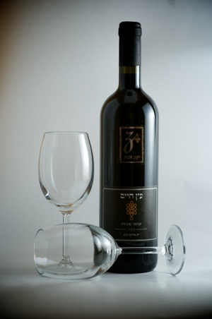 עץ חיים - קברנה סוביניון 2009 - יין אדם יבש